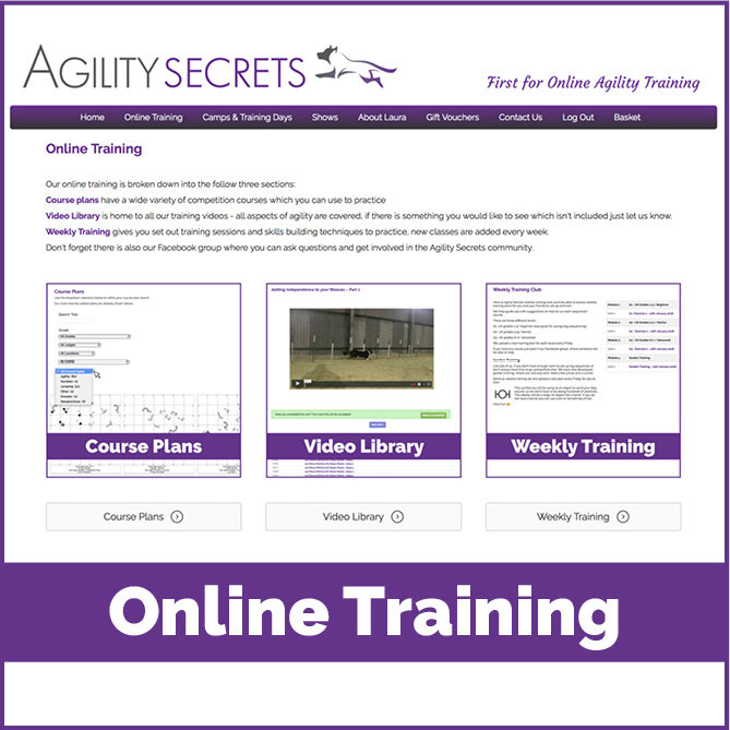 Agility-online-training