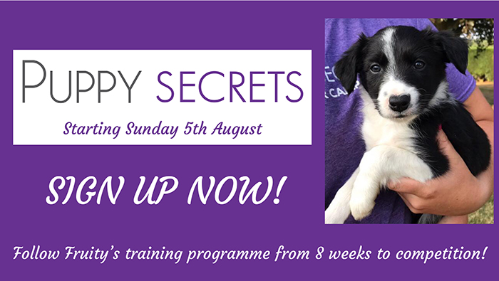 puppy secrets -HP2