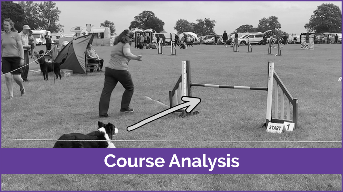 course analysis page