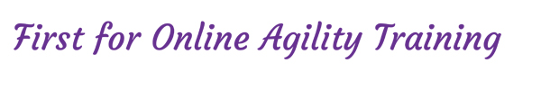 https://www.agility-secrets.com/wp-content/uploads/2020/05/tagline-1.png